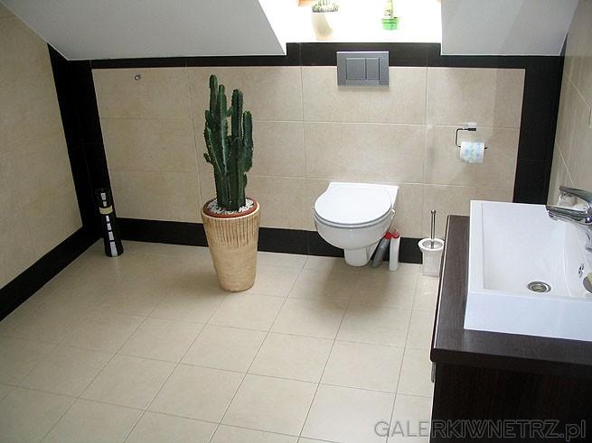 Łazienka na poddaszu posiada skosy i okno dachowe. Duży kaktus urozmaica wnętrze