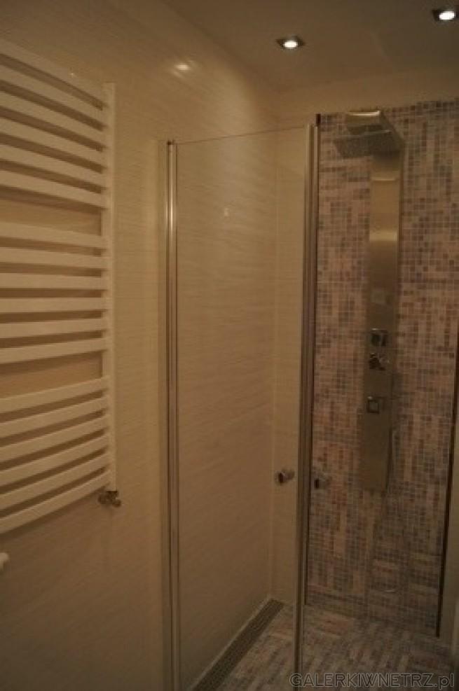 Kabina prysznica bez brodzika. Na podłodze mozaika. Na ścianie z panelem prysznicowa ...