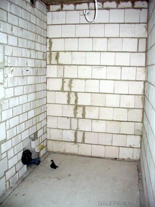 Łazienka po odbiorze technicznym mieszkania. Ściany są z cegły i nie zostały ...