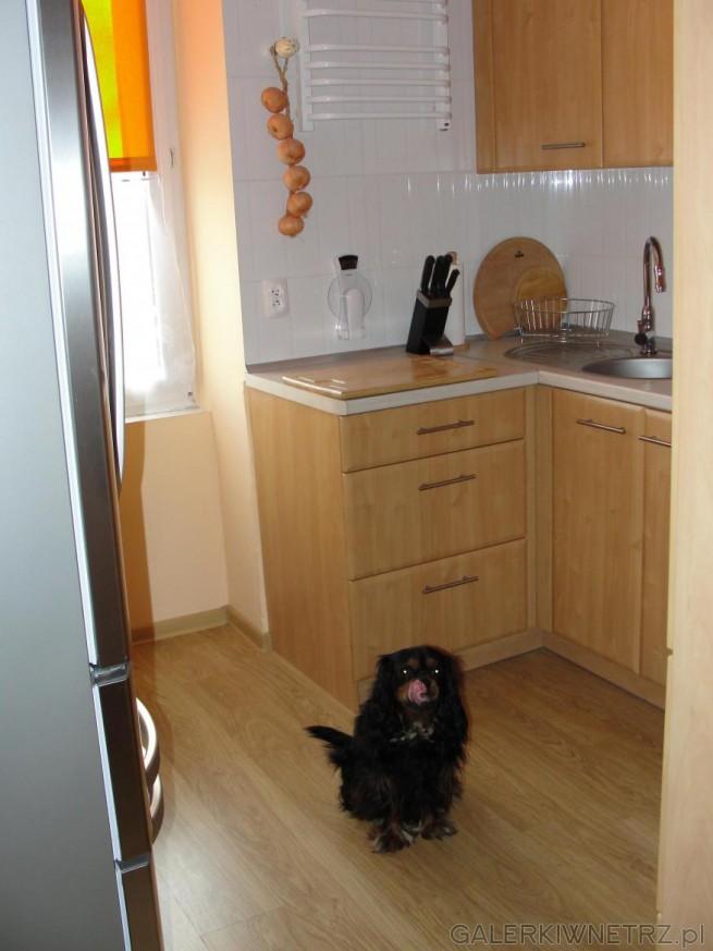 Kuchnia idealna do niewielkiego mieszkania w bloku. Małe, dobrze zagospodarowane ...
