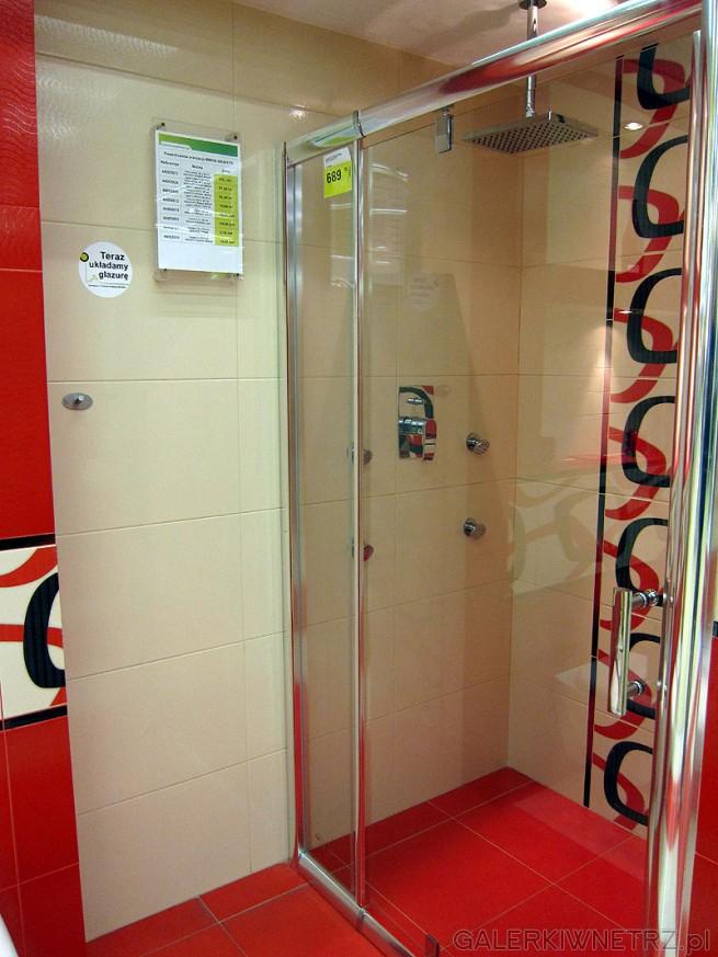 Drzwi kabiny 689PLN