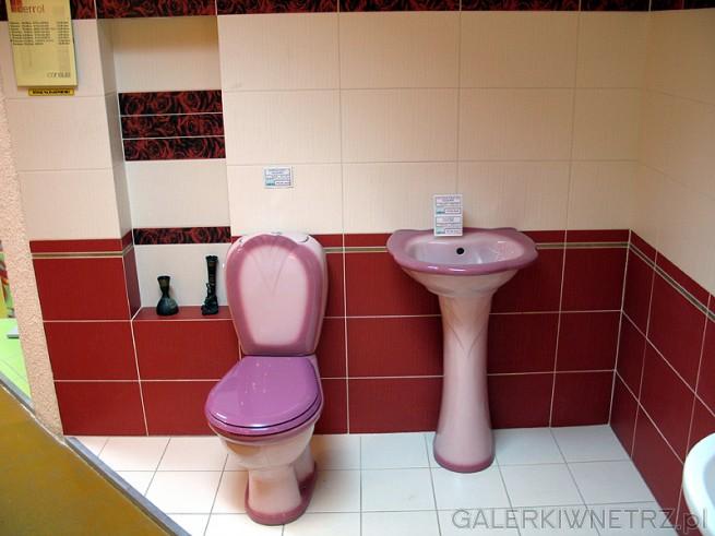Bardzo kontrowersyjna umywalka i WC. Zar贸wno kolorystyka jak i kszta艂t s膮 kontrowersyjne ...