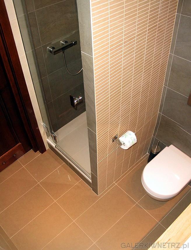 Kabina prysznicowa ze szklanymi drzwiami odbiega od popularnych kabin będących ...